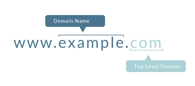 The Anatomy of a Good Domain Name